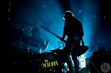 The Octopus Concert des bénévoles Vieilles Charrues samedi 11 décembre 2010 par herve le gall photographe cinquieme nuit